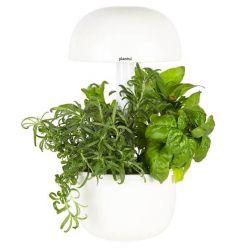 GIARDINO INTELLIGENTE Plantui 3e Smart Garden - SG3e-W