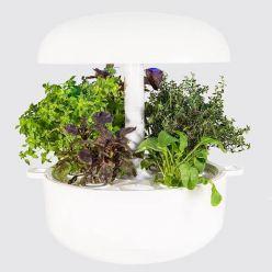 Plantui 6 Smart Garden Bianco